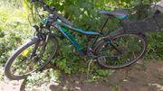 Kinder Fahrrad Winora Dash 26