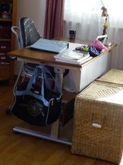 Schreibtisch Massivholz Paidi - verstellbar