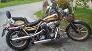 Harley Davidson Low Rinder spez