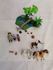 Playmobil Country 6947