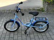 Puky Delphin Fahrrad 18 Zoll