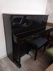 Klavier Bechstein Studio 115 gebraucht