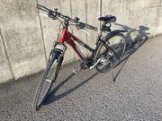 Damen-Trekking-Bike sehr guter Zustand