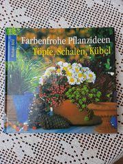 Farbenfrohe Pflanzideen Töpfe Schalen Kübel