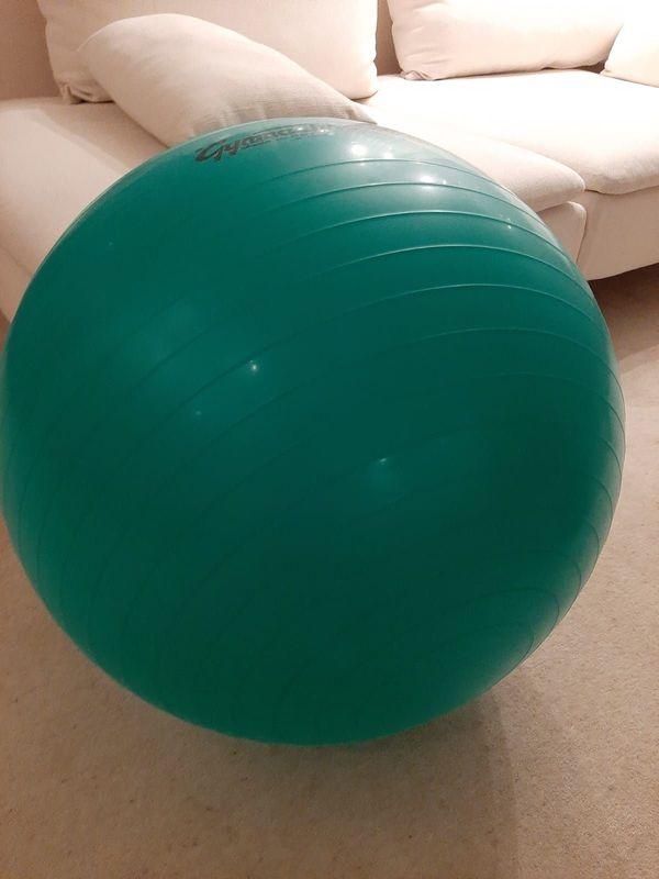 PEZZI Gymnastikball Standard groß 65cm