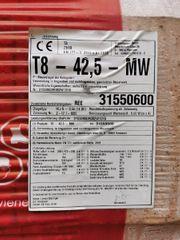 Porotonsteine T8 - 42 5 - MW