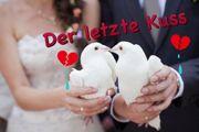 NEIN zu Hochzeitstauben