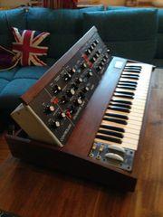 Minimoog Model D Synth BJ