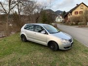 VW Polo family 1 4