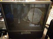 Fernseher SONY 100 cm Bilddiagonale