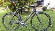 Rennrad Specialized S-Works Roubaix Rahmen