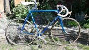 Eddy Merckx Campagnolo 50th