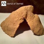 Reptilienhöhle Felsoptik L