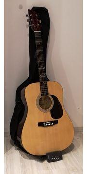Country Gitarre MSA CW200