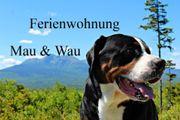 Bayerischer Wald - SOMMERFERIEN im Juli