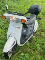 Motorroller Honda Lead 50ccm wenig