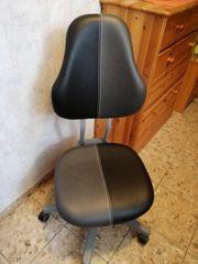 MOLL Schreibtisch und Stuhl Set-Preis