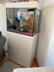 Aquarium Juwel 100 Liter mit