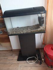 70l tetra aquarium mit filter