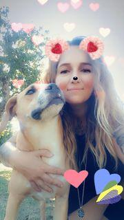 Liebevolle Hundebetreuung Urlaubsbetreuung Tierbetreuung