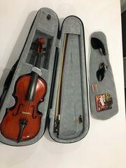 Violine Geige 3 4