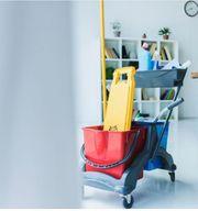 Gebäudereinigung - Büro- Unterhaltsreinigung Treppenhausreinigung