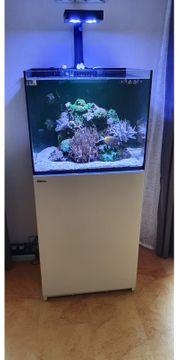 Meerwasseraquarium Red Sea Reefer 170