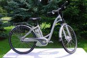 E-Bike Flyer T5 Deluxe Jahresräder