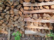 Brennholz Kiefer 5 Ster