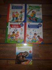 Buchpaket mit 5 Büchern Wiso