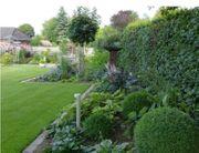 biete regelmäßige Gartenpflege an