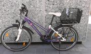 Raleigh Jugend Mountainbike