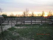 Grundstück für Pferdehaltung zu Mieten