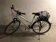 Damen Fahrrad Stevens Jazz