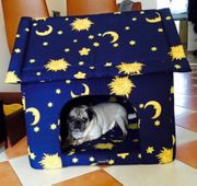 Hunde Katzenhaus