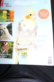 WP- Magazin Wellensittich Papageien