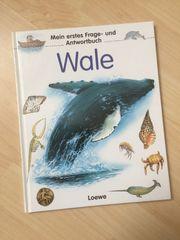 Mein erstes Frage- und Antwortbuch Wale