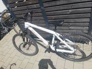 24 zoll Scott MTB Mountainbike