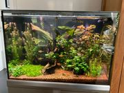 Eheim Proxima 175 Aquarium Komplett-Set