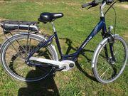 Damen E Bike Hercules Roberta