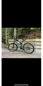 E-Bike Fully-Cross-Pedelec-Focus-Thron