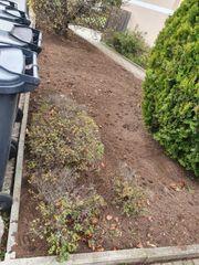 Gartenarbeit Gartnpflege