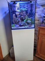 Red Sea Nano 75Liter Meerwasser