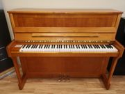 WILH STEINBERG Klavier IQ 116