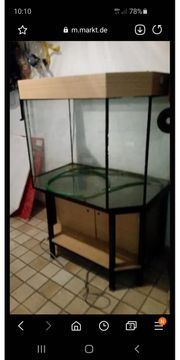 Aquarium ab zu geben 90x60x60