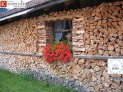 Putzbrunn Umgebung Scheitholz Kaminholz Feuerholz