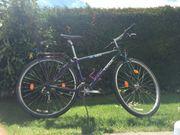 28 Zoll Trecking Fahrrad Treck