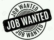 suche job teilzeit bezirk dornbirn