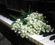Klavierunterricht in Bochum