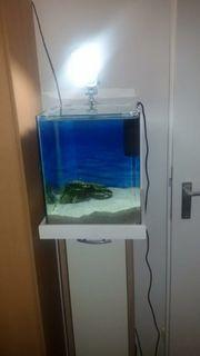 30 Liter Aquarium